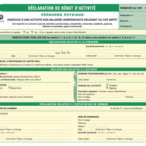 Déclarer son activité de VDI : Comment remplir le formulaire PO i