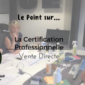 Focus sur les Certifications Professionnelles VDI